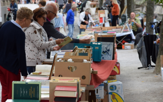 Cancelled-Book market:1 and 2 August 2020